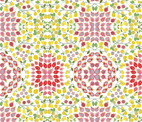 Dragonfruit and the Charming Quinces fabric by ladyrattus on Spoonflower - custom fabric