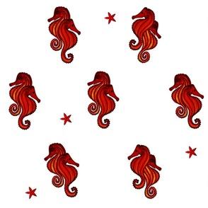 Seahorses couples
