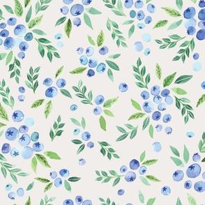 blueberrybushes