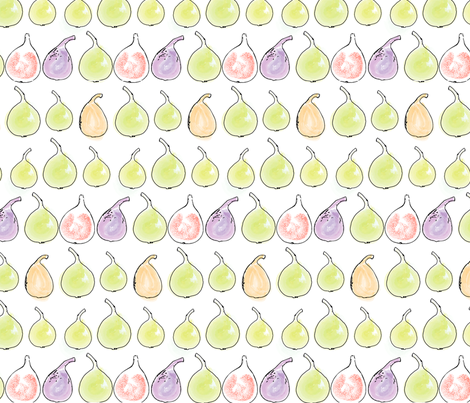 Rows of figs fabric by carovalver on Spoonflower - custom fabric