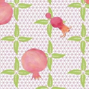 Pretty In Pink Pomegranates