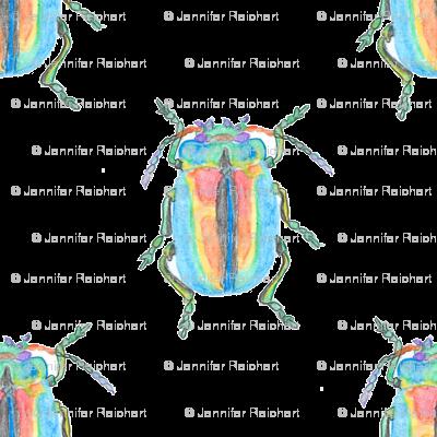 Rainbow Beetle Watercolor