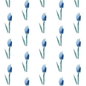 cestlaviv_grape_hyacinth_6x9