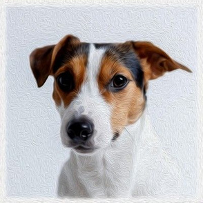 parson russell terrier - painted