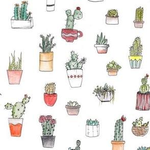 Cactus cacti garden botanical succulent green garden pattern illustration print Small