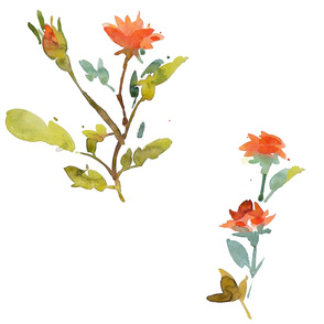 cestlaviv_coral_rose_18x18