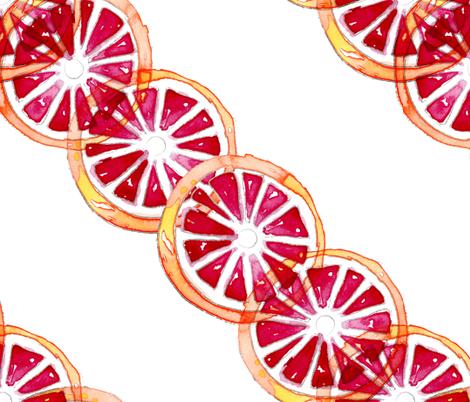Fruity Drinks : Blood Orange Margaritas fabric by paigemeredith on Spoonflower - custom fabric