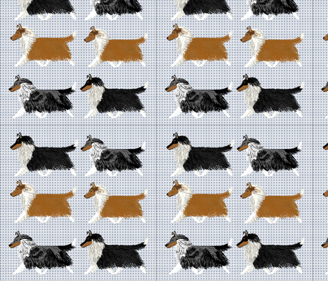 Rough Collies on a Blue Checker Background fabric by country_pup on Spoonflower - custom fabric