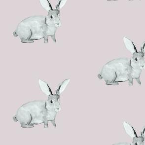 Bunny Blush