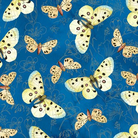 moths-blue fabric by gaiamarfurt on Spoonflower - custom fabric