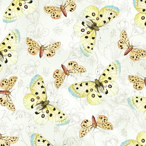 moths-white fabric by gaiamarfurt on Spoonflower - custom fabric