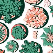 Succulent pots 2