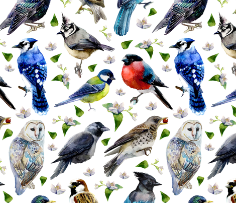 spring birds fabric by torysevas on Spoonflower - custom fabric