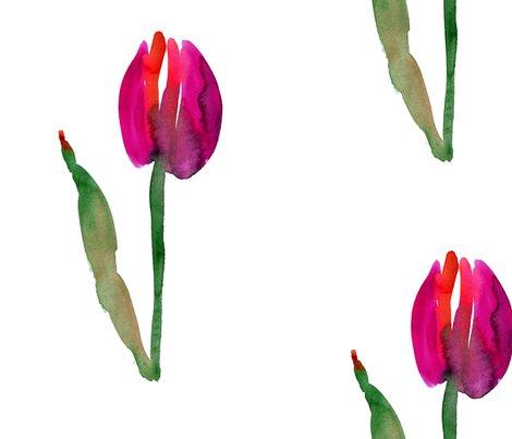 Rcestlaviv_tulip_no1saturated_shop_preview