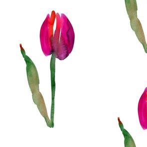 cestlaviv_tulip_no1saturated