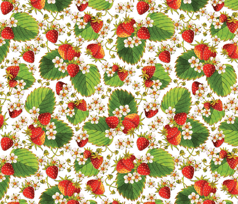 Watercolour Strawberries fabric by patriciasheadesigns on Spoonflower - custom fabric