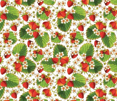 Watercolour Strawberries fabric by patriciasheadesigns on Spoonflower - custom fabric