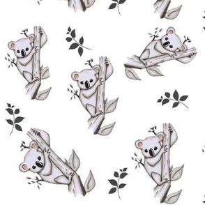 Koala - Namümade design-ed-ed-ed-ed-ed-ed-ed