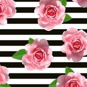 Rrose_stripe_shop_thumb