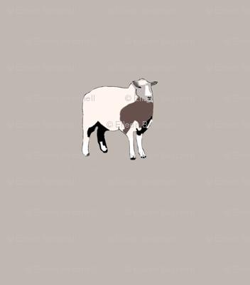 Single_SheepBrownBkgr