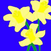 Daffodil Love