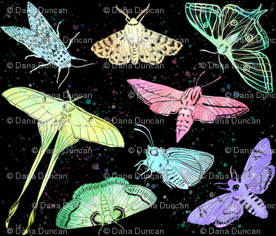 Colorful Night Flyers
