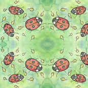 Rladybugs_ed_ed_shop_thumb