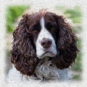 english springer spaniel - painted
