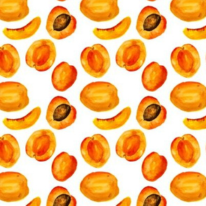 Watercolor apricots
