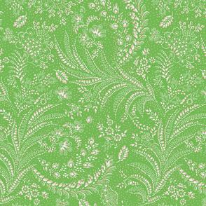 fern floral botanical organic green