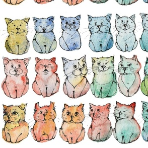 27 shades of cats