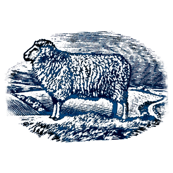 Numerable Sheep Blue