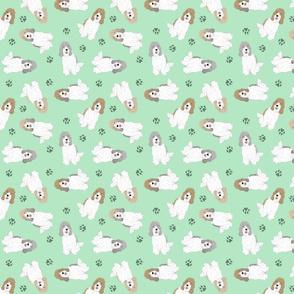 Tiny Petit Basset Griffon Vendeen - green