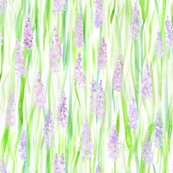 Rwatercolor-lavender-grass-v2_shop_thumb