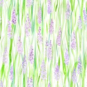 Watercolor Lavender