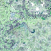 Leopard Spots in Blue and Green LARGE