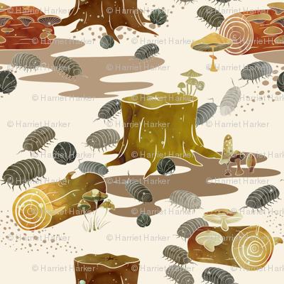 Woodlouse Wanderings