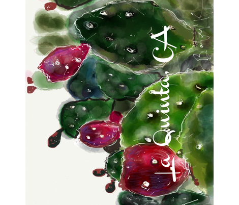 La Quinta, CA Prickly Pear fabric by kschowe on Spoonflower - custom fabric