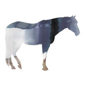 """8"""" Horse Tie Dye"""