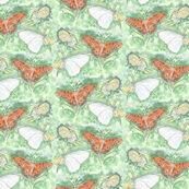 Three Butterflies Watercolor Allover
