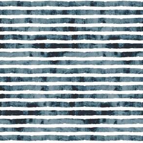 toucan blue stripe coordinate