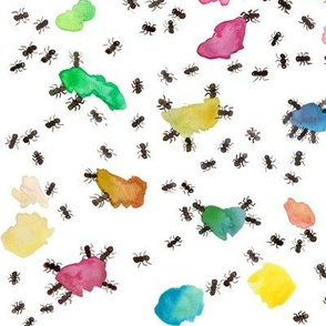 Crazy Ant Antics brights