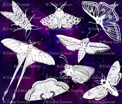 Moths in a Painted Sky