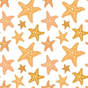 Dotty Starfish