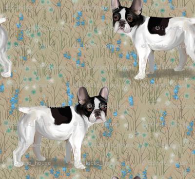 French Bulldog in Wildflower Field on Beige