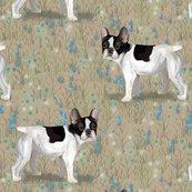 Rfrench_bulldog_in_wildflower_field_on_beige_rev2_shop_thumb