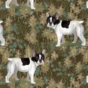 Rfrench_bulldog_in_wildflower_field_on_brown_rev2_shop_thumb
