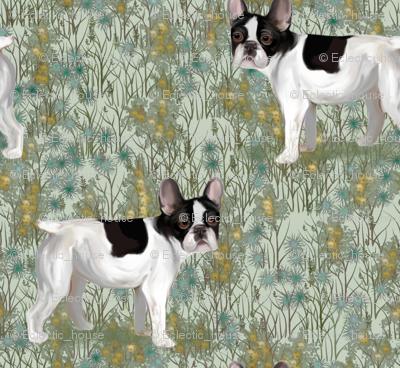 French Bulldog in Wildflower Field on Mint Green