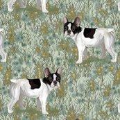 Rfrench_bulldog_in_wildflower_field_on_mint_green_rev2_shop_thumb