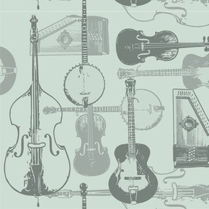 String Band Musical Instruments